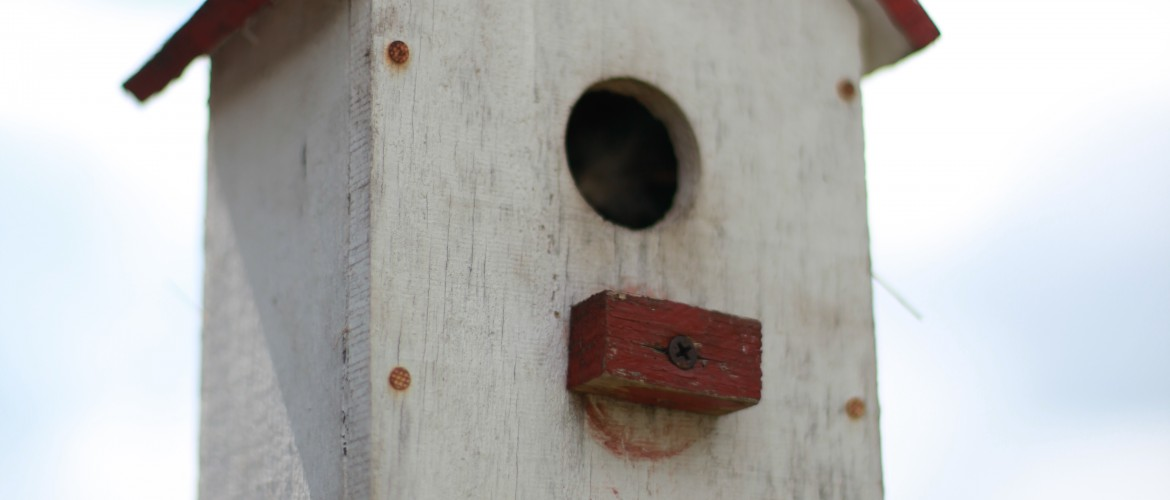 Wooden Birdhouse on Fence Post