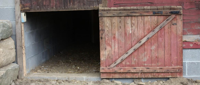 Bottom Dutch Door for Sheep Entrance